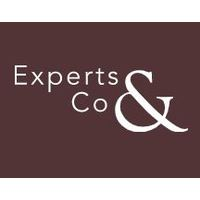 EXPERTS & CO